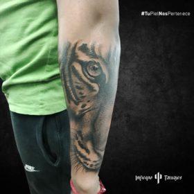 tatuaje de tigre, tatuajes en el brazo, imágenes de tatuajes en el brazo, tatuajes de tigres, infierno tatuajes