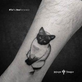 tatuaje de gato siamés, tatuajes de animales, donde tatuarme mi mascota, tatuadores cdmx, infierno tatuajes