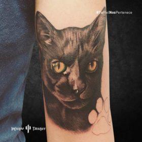 tatuaje de gato negro, tatuajes de animales, ideas de tatuajes en el antebrazo, estudio de tatuajes en coyoacán, infierno tatuajes