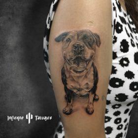 Tatuaje de perro en el brazo – Creado por Paula   Infierno Tatuajes