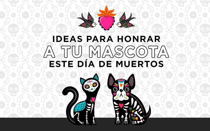ideas para honrar a tus mascota este día de muertos