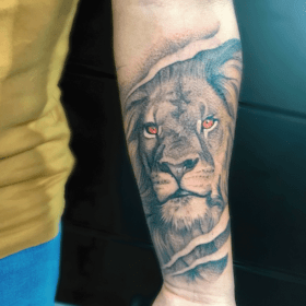 tatuaje de leon realista en blanco y negro, mejores tatuadores CDMX, infierno tatuajes, toykbrown