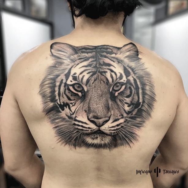 tatuaje grande en espalda de tigre en sombras, mejores tatuadores CDMX, infierno tatuajes, toykbrown